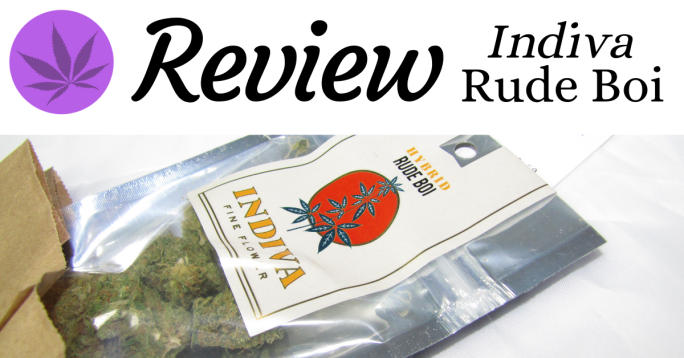 Review Indiva Rude Boi Header Image Featured Image
