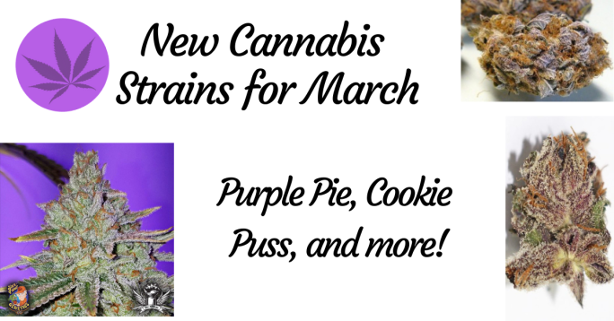 New Cannabis Strain's for March : Purple Pie, Cookie Puss, and more!